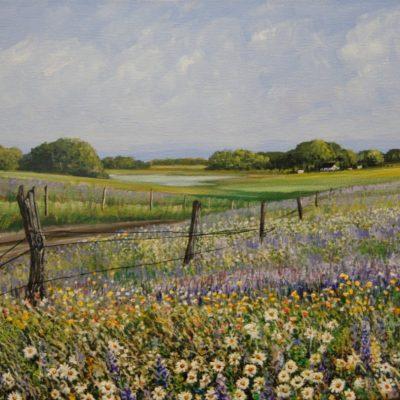 Fields & Valleys